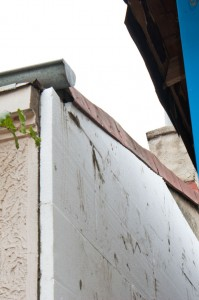 Install polystyrene sheets on concrete wall