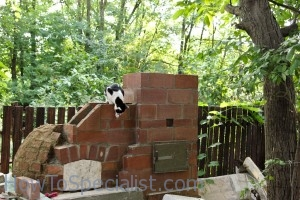 Brick chimney for pizza oven