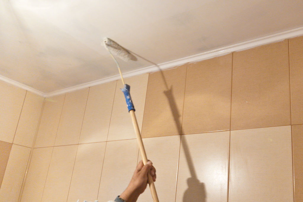 How to paint ceilings howtospecialist how to build for Painting on ceiling