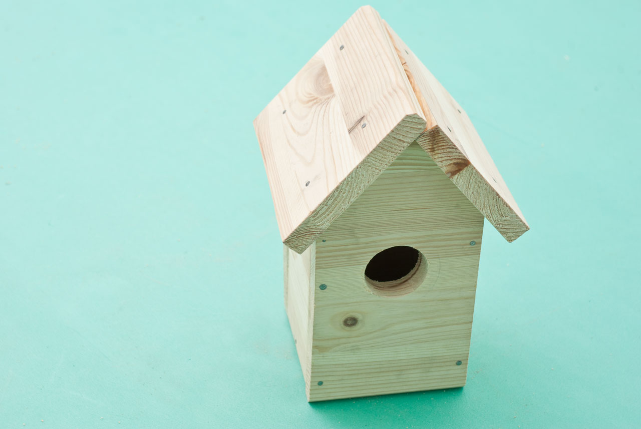 Building a bird house