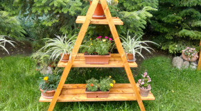 Featured projects howtospecialist how to build step by step diy plans - Ladder plant stand plans ...