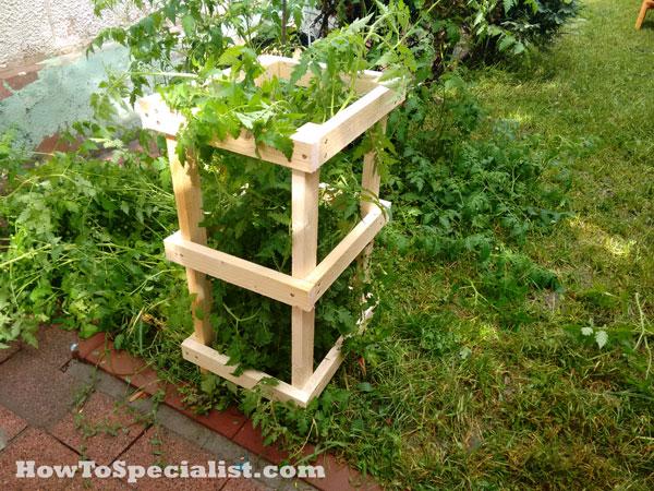 DIY-Tomato-Cage