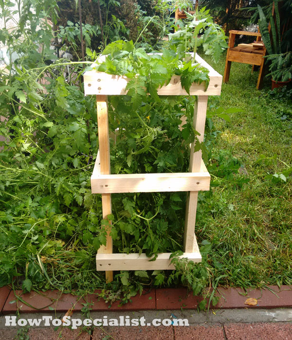 How-to-build-a-tomato-cage