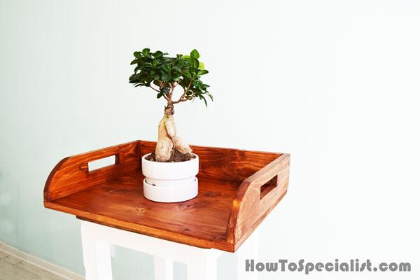 DIY Wood Potting Tray
