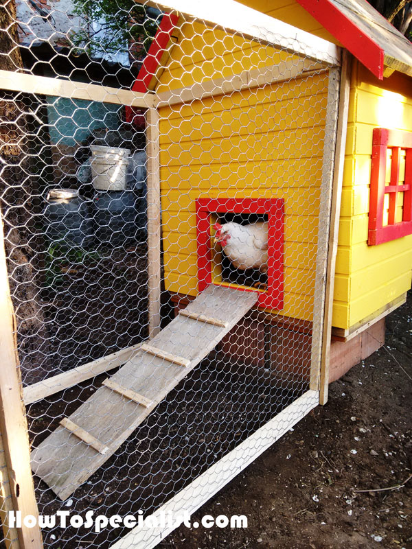 Chicken-coop-ladder